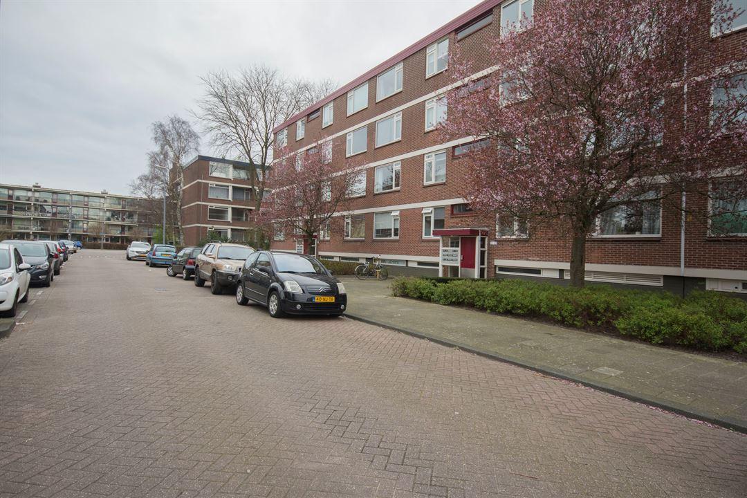 Ruigoord, Rotterdam