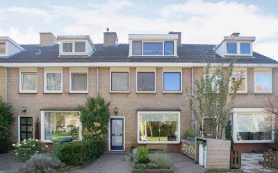 Aangekocht: lepelaarplantsoen in Maassluis
